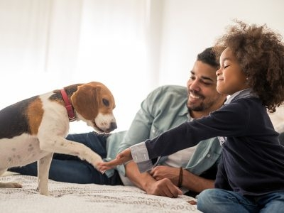A Pet to Love: Having a Pet Helps You Live Longer