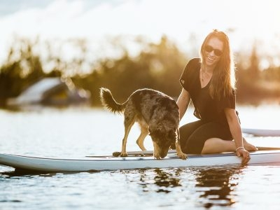 Top Dog-friendly Cities to Visit in America