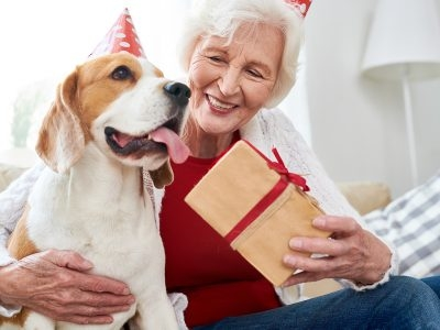 Caring For Your Aging Pets